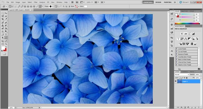 image-selection-in-photoshop-for-image-with-in-shapes.jpg