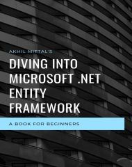 Diving Into Microsoft .NET Entity Framework