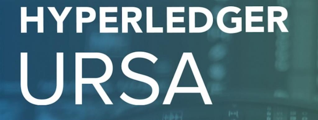Hyperledger Ursa