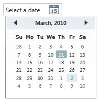 Creating a DatePicker