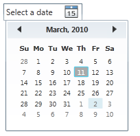 WPF DatePicker Control