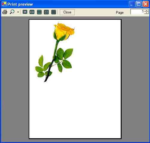 PageSetupDialog in C#
