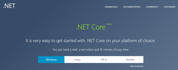 .NET Core is a cross-platform programming framework by Microsoft