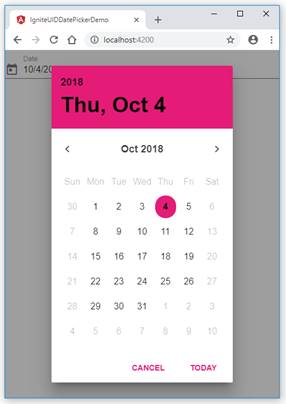 Date picker in Angular