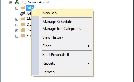 How To Hit MVC Endpoint Using SQL Job