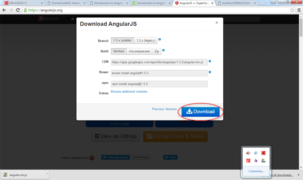 what is application data in angularjs