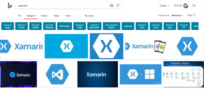 Xamarin.Forms - Bing Image Search Using Cognitive Service